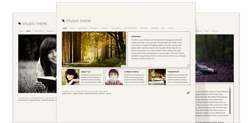 OrganicThemes - Studio Theme v1.3.1 for WordPress