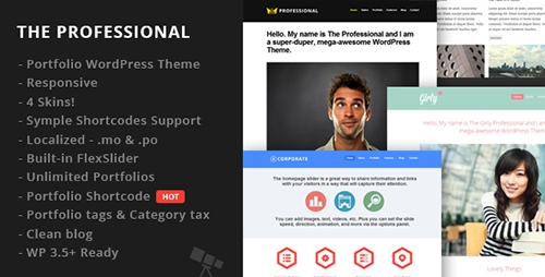 ThemeForest - The Professional v1.2 - WordPress Theme