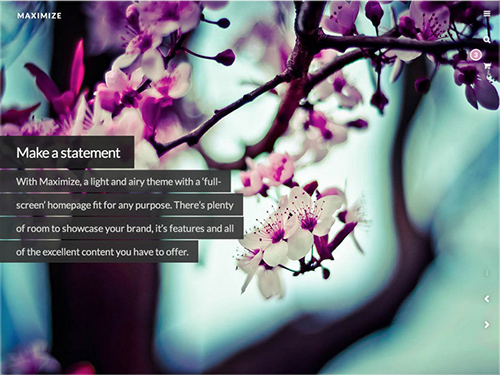 WooThemes - Maximize v1.0.0 - WordPress Theme