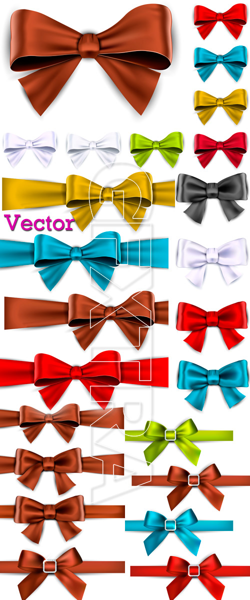 Beautiful bows in vector
