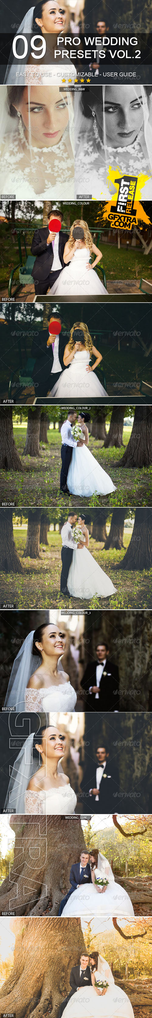 GraphicRiver - 9 Pro Wedding Presets vol.2 6441398