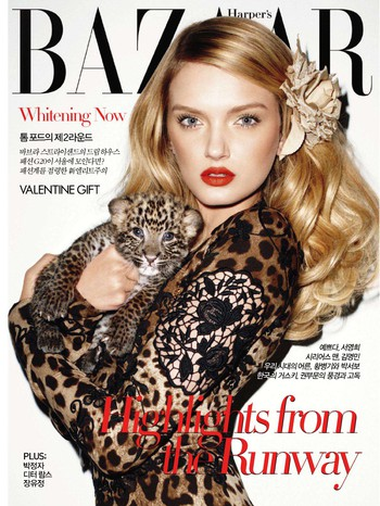 Harpers Bazaar - February 2011 (Korea)