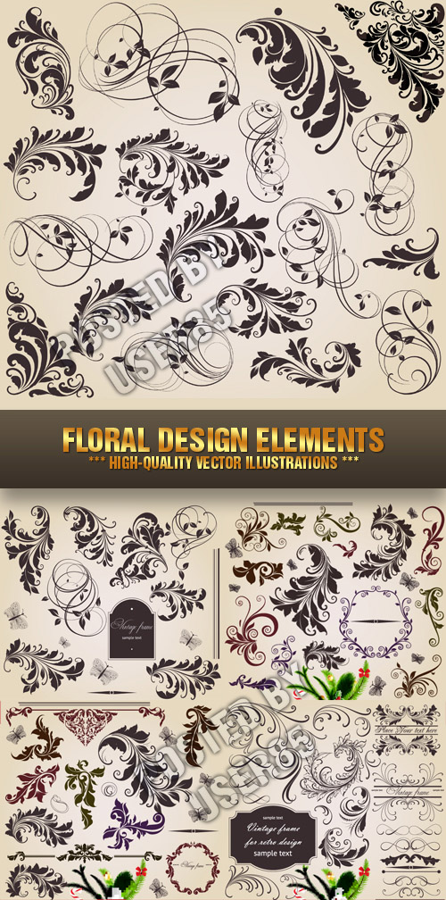 Stock Vector - Floral Design Elements