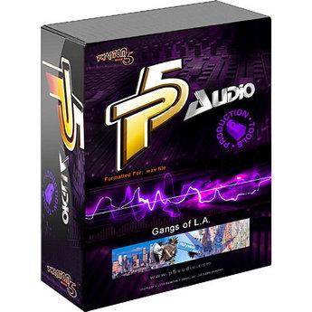 P5Audio Tupacalypse Construction Loop Sets Vol.1 WAV (1 cd)