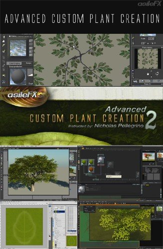 Asilefx Advanced Custom Plant Creation CD1 & CD2