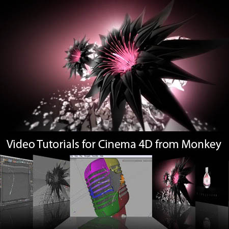 Cinema 4D Video Tutorials - From Monkey