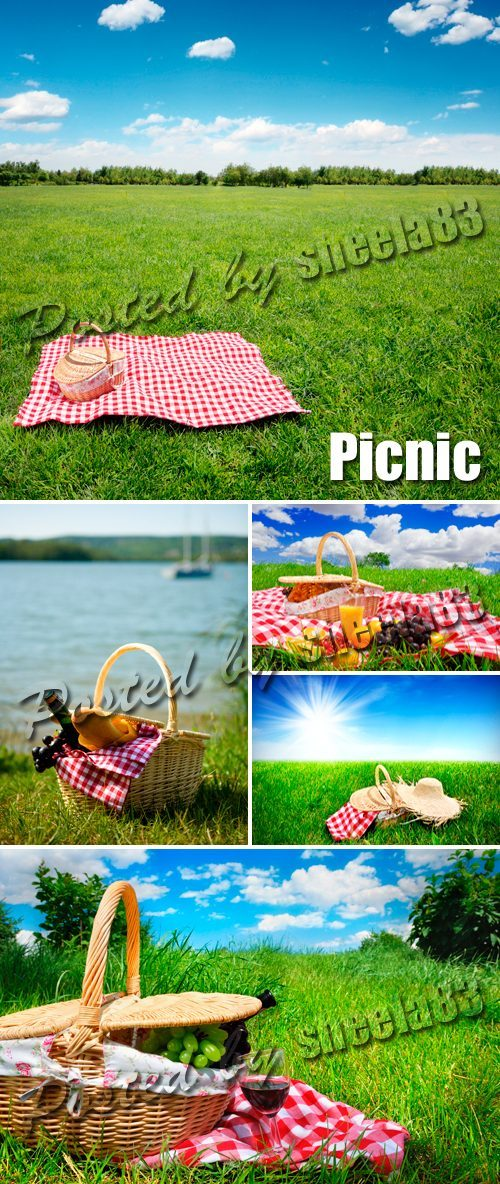 Stock Photo - Picnic