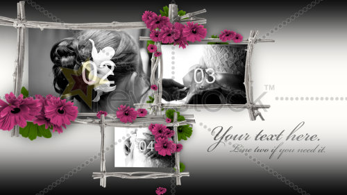After Effects Project - Floral Frames 106358
