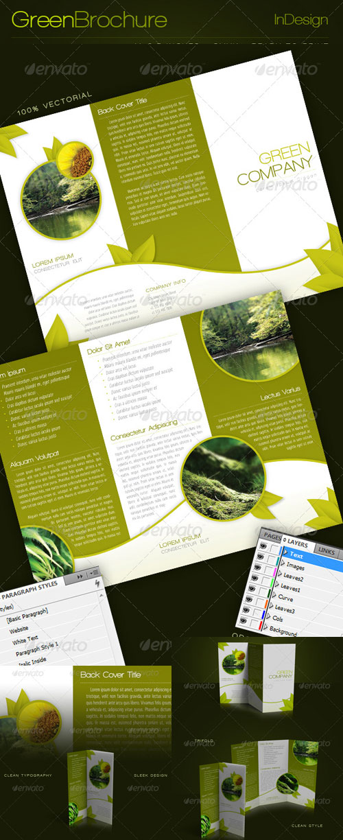 trifold brochure indesign template vector photoshop psd template