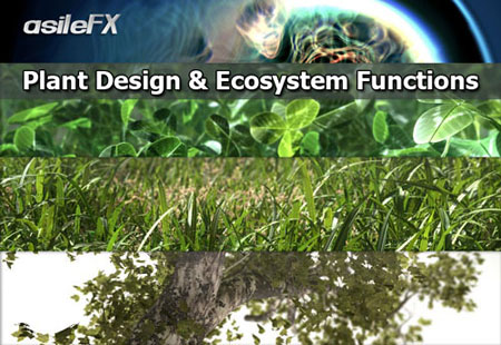 Asilefx - Plant Design & EcoSystem Functions in Vue 9.5