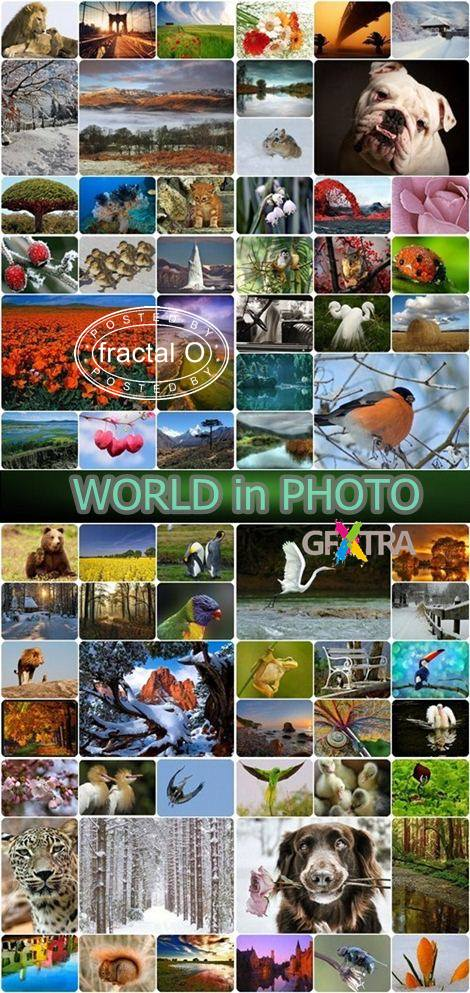 WORLD in PHOTO | June 2010 | 3000+ JPG | 1138.52MB | HF-RS
